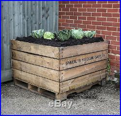 60 Apple Bins, Large Wooden Crate, Bulk Buy, Free Shipping